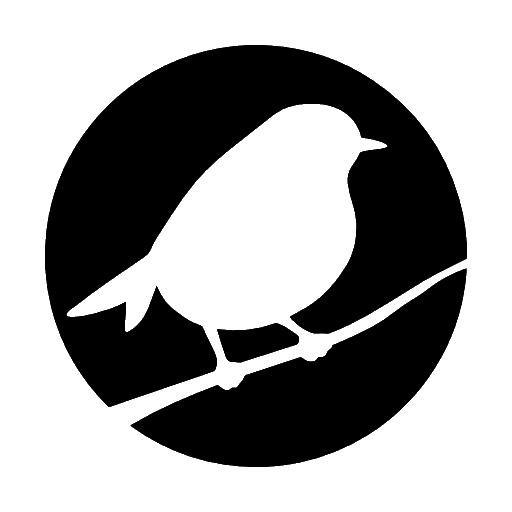 Robin Denim Logo
